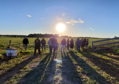 Group of individuals stand in a farm field with sun setting.